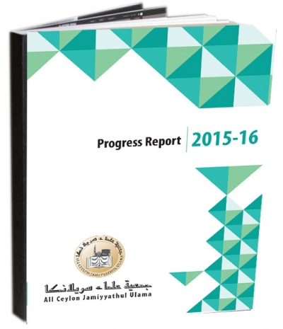 Progress Report 2015/2016